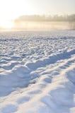 Sneeuw landschap en nevelig Royalty-vrije Stock Foto's