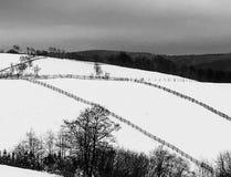 Sneeuw lanscape zwarte & wit stock foto