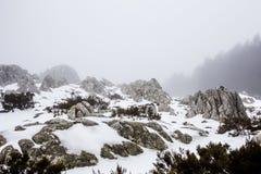 Sneeuw in Limbara Royalty-vrije Stock Foto's
