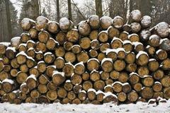 Sneeuw logboeken Stock Fotografie