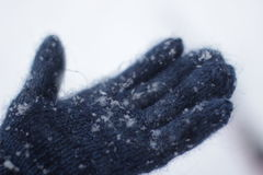 Sneeuw in mijn hand Royalty-vrije Stock Fotografie