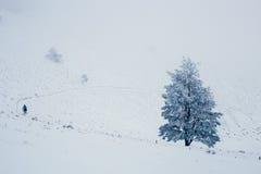 Sneeuw moutain landschap tijdens de winter Royalty-vrije Stock Afbeeldingen