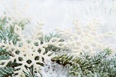 Sneeuw nette takken stock foto