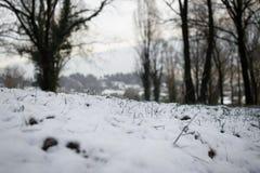 Sneeuw nu Stock Afbeeldingen