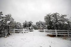 Sneeuw omheining Stock Foto