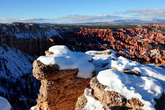 Sneeuw omvat Bryce Canyon National Park Royalty-vrije Stock Foto