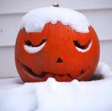 Sneeuw Omvat Jack O'Lantern Royalty-vrije Stock Afbeelding