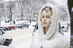 Sneeuw omvatte ledenpop Stock Afbeeldingen