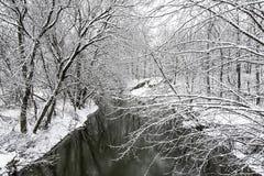 Sneeuw op de Kreek Stock Afbeelding