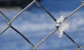 Sneeuw op de omheining Stock Fotografie