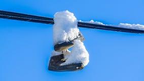 Sneeuw op de schoenen Royalty-vrije Stock Fotografie