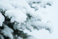 sneeuw op een spartak in stedelijk park stock afbeeldingen