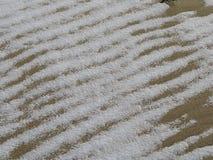 Sneeuw op gegolft zand Stock Afbeeldingen