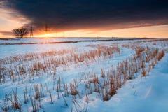 Sneeuw op het gebied bij zonsondergang Het landschap van de winter Royalty-vrije Stock Foto