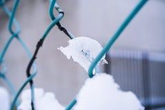 Sneeuw op netto metaal royalty-vrije stock fotografie