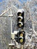 Sneeuw op Verkeerslicht stock foto