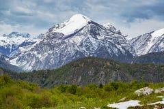 Sneeuw piek en groene heuvels stock fotografie