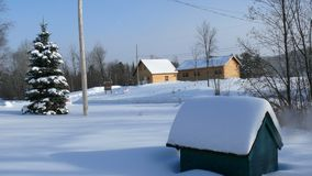 Sneeuw in Quebec Canada, Noord-Amerika Stock Foto's