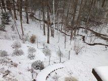 Sneeuw sleep Stock Foto's