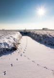 Sneeuw sporen Royalty-vrije Stock Foto
