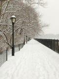 Sneeuw Steeg, Central Park, New York Royalty-vrije Stock Afbeelding