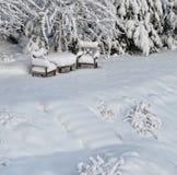 Sneeuw stoelen in de winter Royalty-vrije Stock Afbeelding