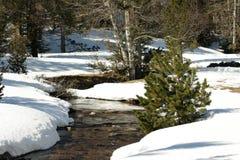 Sneeuw stroom in de Pyreneeën stock afbeeldingen