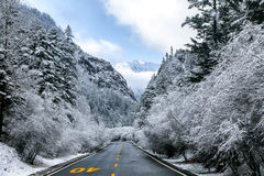Sneeuw terwijl het reizen Royalty-vrije Stock Afbeelding