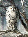 Sneeuw uil vector illustratie