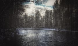 Sneeuw van de de aard de mooie winter van rivierbomen in openlucht Stock Afbeelding
