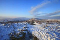 Sneeuw van het Dartmoor de nationale park Royalty-vrije Stock Afbeeldingen