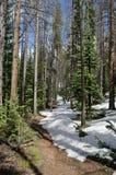 Sneeuw wandelingsweg in Colorado Stock Foto