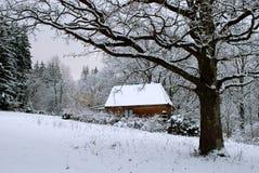 Sneeuw weer Stock Afbeelding
