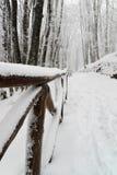 Sneeuw weg Stock Afbeeldingen