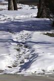 Sneeuw Weg royalty-vrije stock afbeeldingen