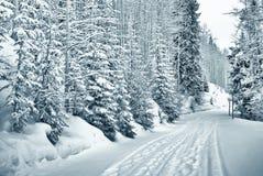 Sneeuw weg 4 van 9 Royalty-vrije Stock Afbeelding