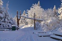 Sneeuw Weg Stock Fotografie