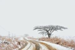 Sneeuw weg in platteland Royalty-vrije Stock Afbeelding
