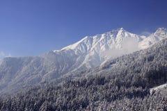 Sneeuw witte bergen Stock Afbeelding