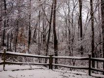 Sneeuw witte dag in Mayberry Stock Foto's