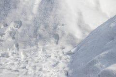 Sneeuw witte oppervlakte royalty-vrije stock foto's
