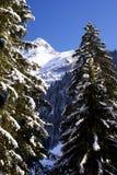 Sneeuw zet in Zwitserland op Stock Foto's