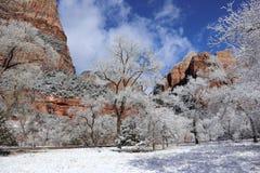Sneeuw in Zion Canyons! Utah royalty-vrije stock foto