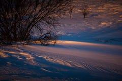 Sneeuwafwijkingen door de zon worden verlicht die Stock Afbeeldingen