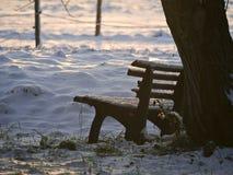 Sneeuwbank Royalty-vrije Stock Foto's