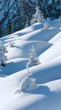 Sneeuwbanken op de wintersneeuw behandelde berghelling royalty-vrije stock afbeeldingen