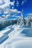 Sneeuwbanken op de wintersneeuw behandelde berghelling royalty-vrije stock foto