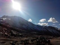 Sneeuwberg met Zonlicht Royalty-vrije Stock Foto's