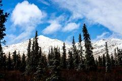 Sneeuwbergen en Blauwe Hemel Stock Afbeeldingen