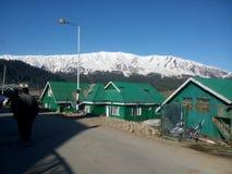 Sneeuwbergen met groene gebouwen Royalty-vrije Stock Afbeelding